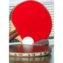 Tennis table