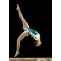 Artistic/Rhythmic gymnastics